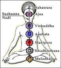 I Chakra Nello Yoga Yoga E Shiatsu Liberi